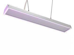 Фито-лампа